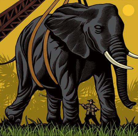 Elephant Vasectomist