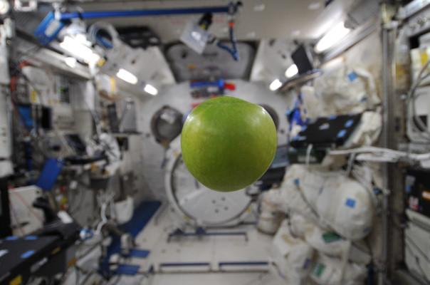 zero-g-apple