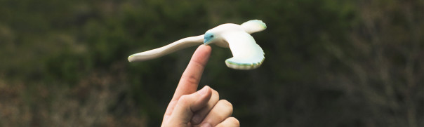 balancing-bird-toy