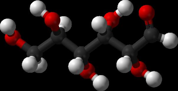monosaccharide-glucose